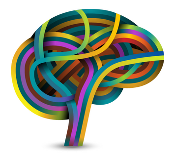مقاله در مورد ساختار ذهنی مغز