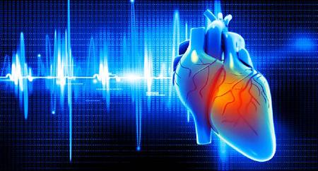 تروپونین های قلبی چه هستند؟