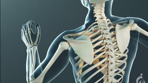 بیماری های ارثی استخوان ها