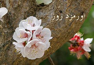 یکم فروردین: اورمزد روز ،جشن نوروز در آغاز فصل بهار